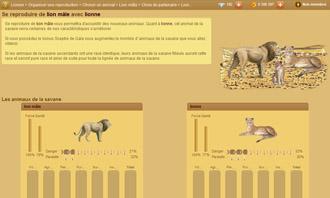 Lionzer - Eine paarung organisieren